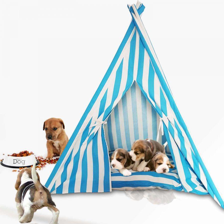 Svava Kedi Köpek Çadırı - Küçük Irk Köpek Kulübesi (Turkuaz - Beyaz)